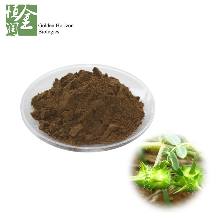 Best Saponins Male Sexual Enhancement Tribulus Terrestris Extract