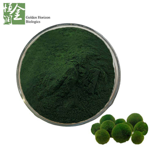 Blood Sugar Balance Chlorella Powder Anticancer