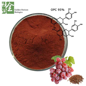 Wholesale Antioxidant Grape Seed Extract Powder Polyphenol 20%-85% for Cosmetics