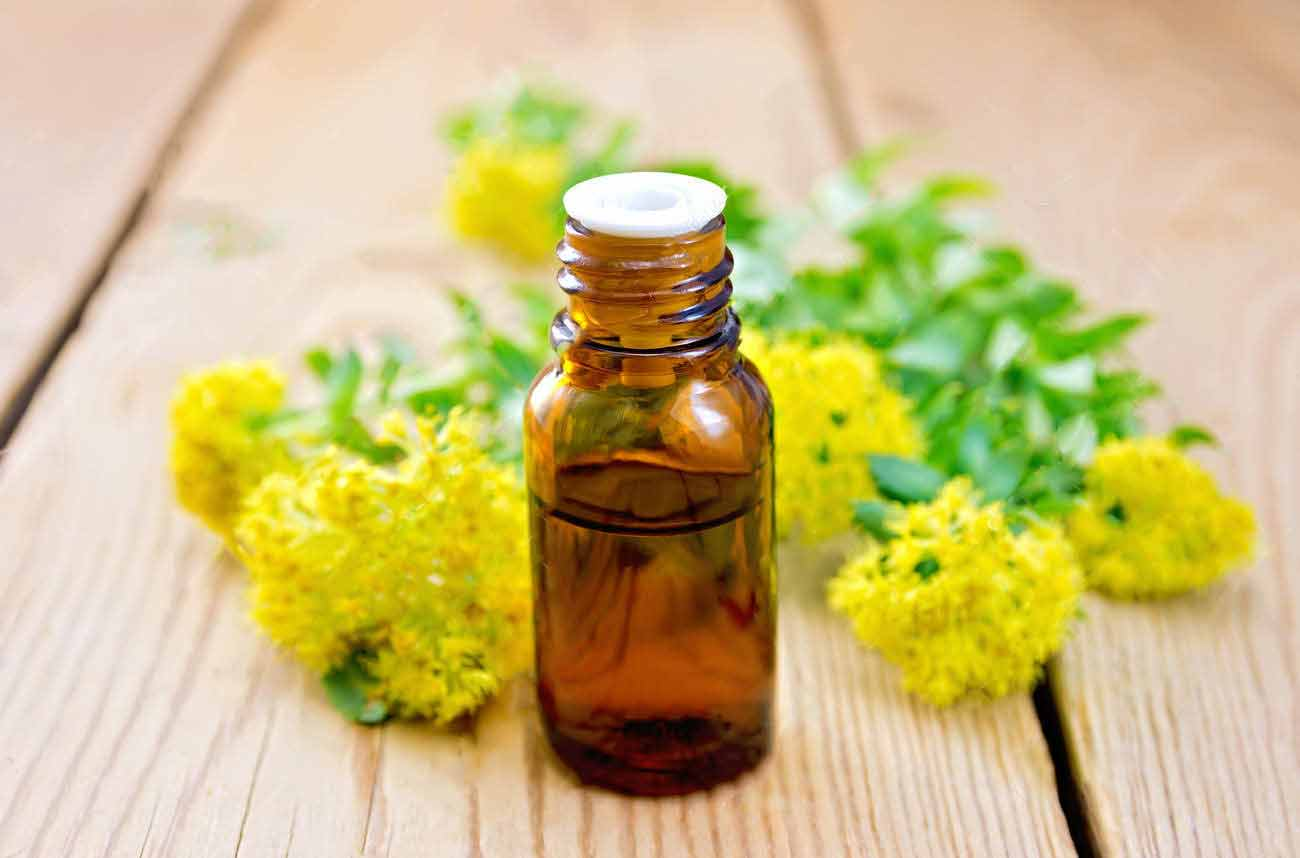 Rhodiola rosea extract in cosmetic