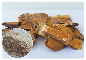 Giant knotweed extract & Resveratrol.jpg