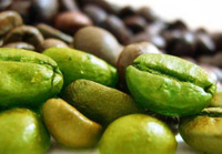 Does green coffee bean extract work? A detailed review