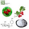 Bearberry Leaf Extract Arbutin 98%