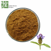 High Quality Spica Prunellae Vulgaris Extract