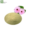 Factory Supply Natural Erigeron Breviscapus Extract Breviscapine