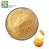 Bulk Spray Dry Dehydrated Organic Instant Orange Juice Drink Powder