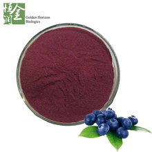High Quality Antioxidant Blueberry/Bilberry Extract 25% Anthocyanin
