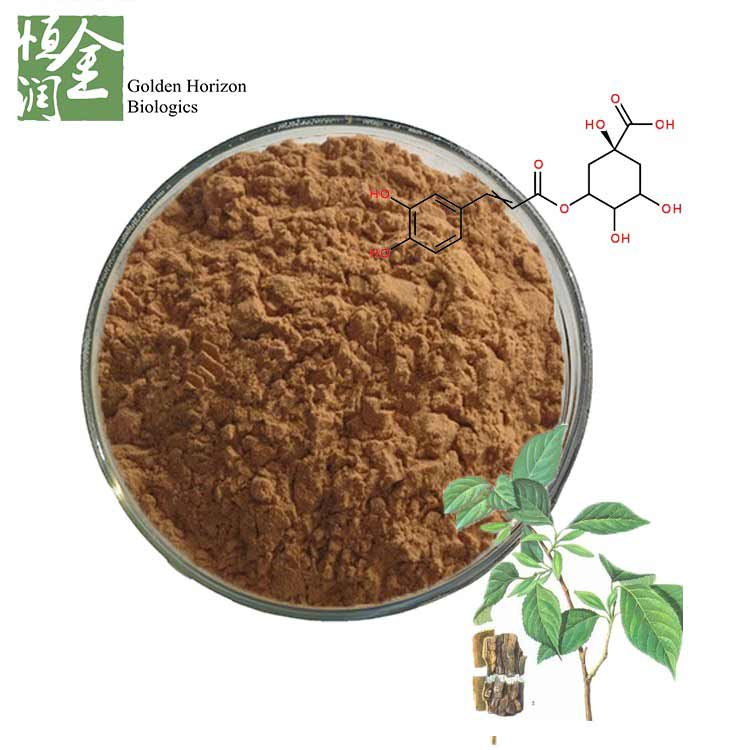 Best Chlorogenic Acid Powder Eucommia Ulmoides Oliver Extract Eucommia Leaf Extract
