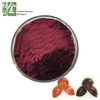 Whosale Anticancer Antioxidant Grape Skin Extract Resveratrol 5-98%