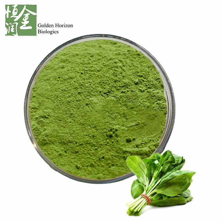 Whosale Best Spinach Extract Powder