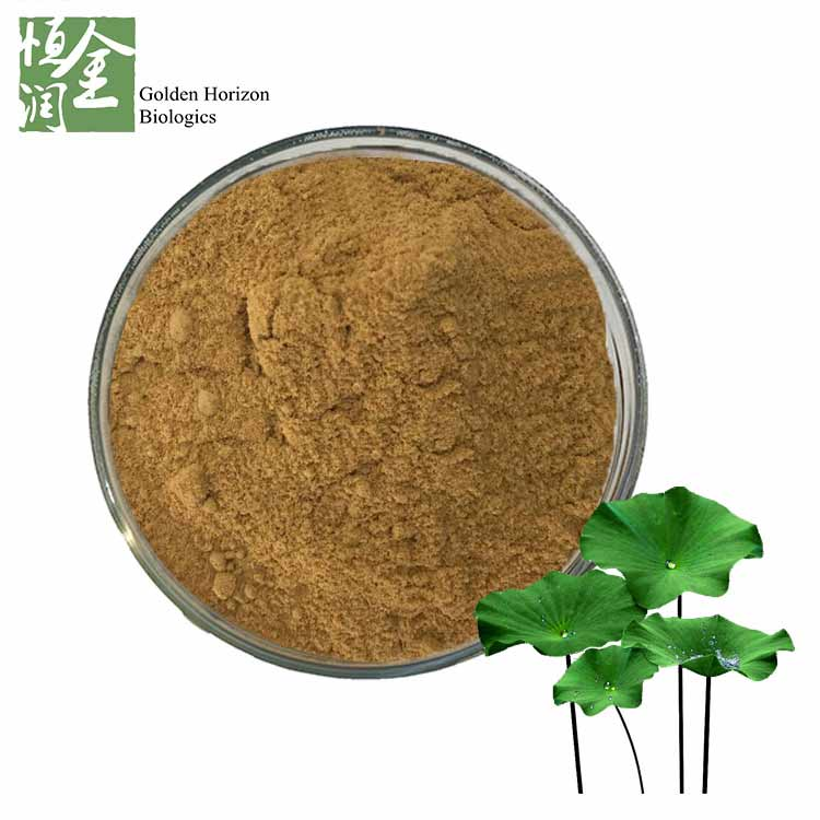 Natural Weight Loss Extract Lotus Leaf Extract Nuciferine 3%-5%