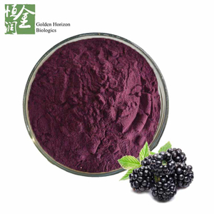 Hot Sale Organic Blackberry Extract 25% Anthocyanins Powder