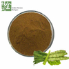 Wild Lettuce Leaf Extract