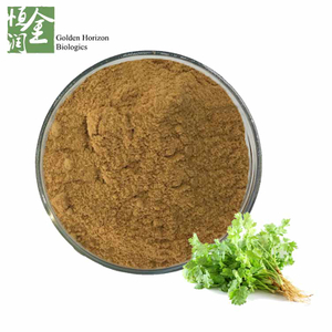 Wholesale Natural Factory Coriander Extract / Coriandrum Sativum Extract / Cilantro Extract