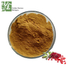 Most Competitive Price Ellagic Acid Powder Pomegranate Seed Extract